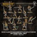 House Ellowuyr Swordsmen with Officer and Standard Unit (resin/metal) BOX
